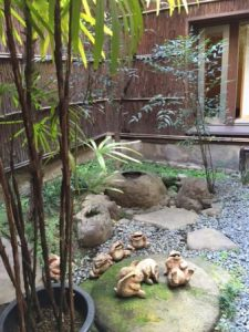 Japanese garden in a house