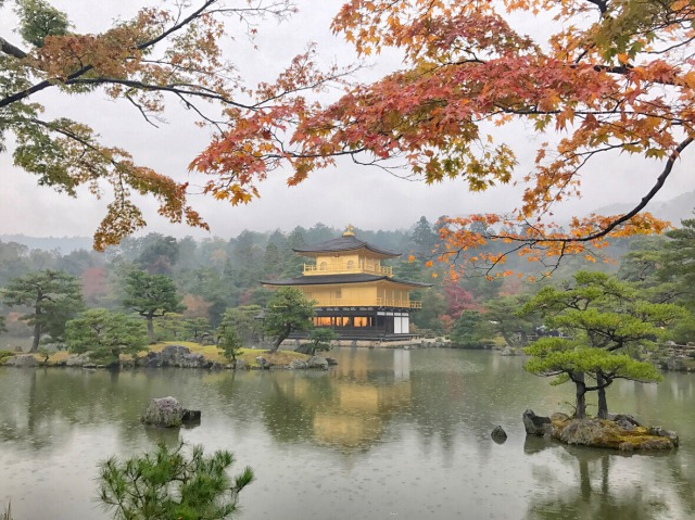 Kinkakuji temple in autumn