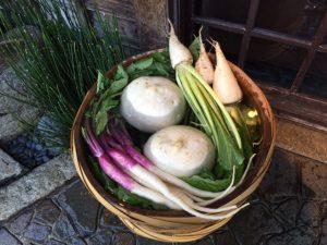 shogoin turnips