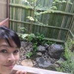 Japanese small garden