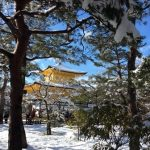 golden pavilion with snow