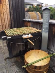 Fushimi sake tasting